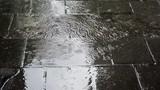rainwater poster