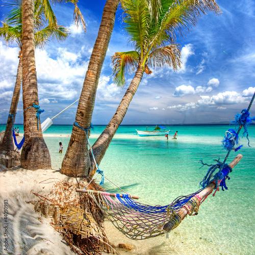 Lasy tropikalne wakacje