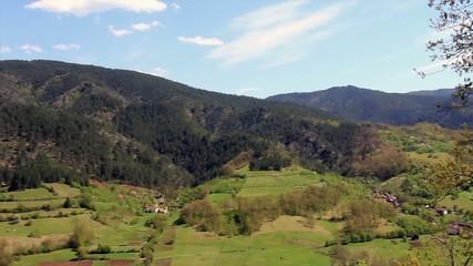 Schwarzwald im Sommer,HD Video
