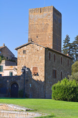Tower of Lavello. Tuscania. Lazio. Italy.