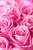 Fototapete Kunst - Hintergrund - Blume