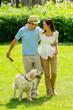 Happy couple walking dog on park lawn