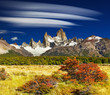 Fototapeten,argentine,herbst,wald,berg