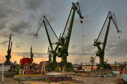 Gdansk shipyard cranes at summer evening - 44062993