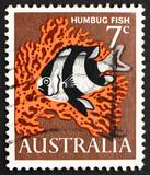 Postage stamp Australia 1966 Humbug Fish, Saltwater Fish poster