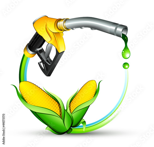 Carburant écologique maïs