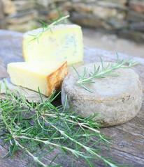 fromages au lait crus bio