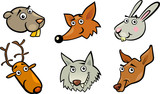 Cartoon forest animals heads set