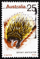 Postage stamp Australia 1974 Spiny Anteater, Echidna