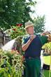 Gärtner gießt Blumen
