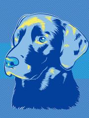 Labrador Dog Pop Art Style © graphicgeoff