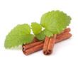 Cinnamon sticks and fresh mint leaf