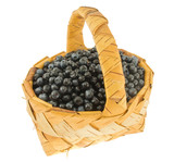 Fresh bilberry in a wattled basket.