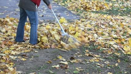 Woman raking autumn leaves in a garden