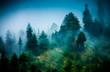 fog - 44120134