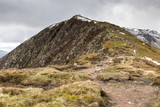 Causey Pike overlooking Scar Crags poster