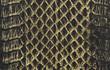 爬虫類の皮革素材