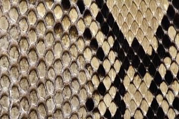 ヘビ柄の背景素材