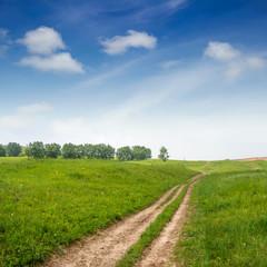 Grassland, trees, roads and sky
