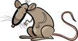 rat cartoon character