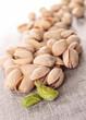 group of pistachio