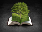 Open nature book