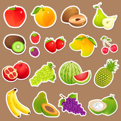 vector illustration of collection of various fresh fruit