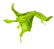 Isolated shot of green paint splash on white background