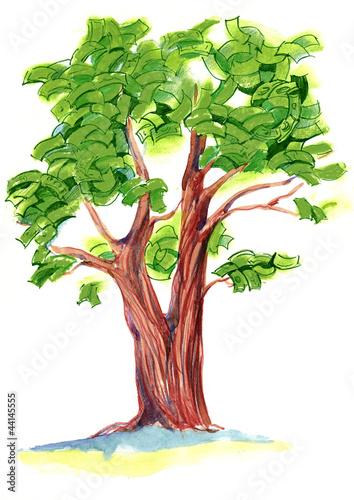 drzewo-pieniedzy