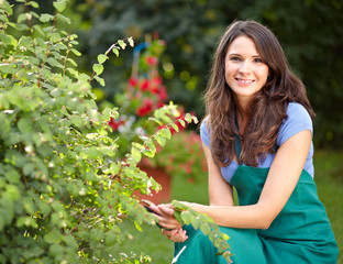 Young female gardener cutting a bush