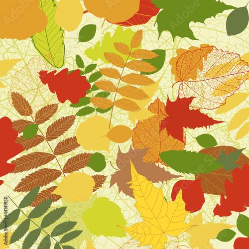 Obraz Autumnal bright leaf background vector eps 8