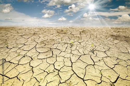 Leinwanddruck Bild Land with dry and cracked ground. Desert