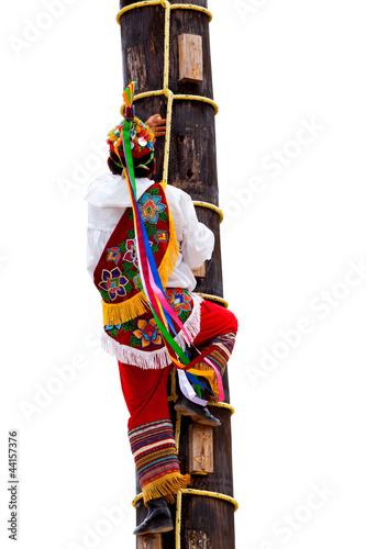 Traditional Mayan Flyer Man Climbing a Tree