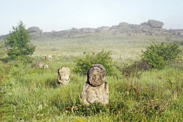 Stone idol in the steppe. National Park Stone Tombs
