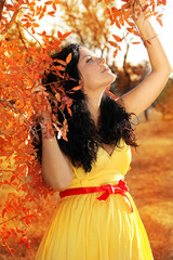 Young beautiful pregnant woman with long dark hair. autumn