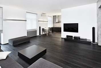 Modern minimalism style sitting room interior in black and white