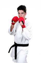 Karate male fighter young