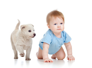 playing crawling baby boy and puppy dog