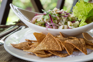 Ceviche with Nachos