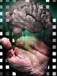 Human Binary Hand
