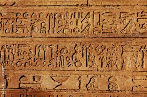 egipska-tekstura