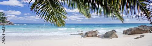 Fototapeten,seychelles,strand,meer,coconut palm