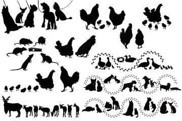 Animal birds dog cats hen duck rat goats