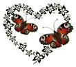 Ranke, flora, Blumen, Blüten, Herz, Schmetterlinge