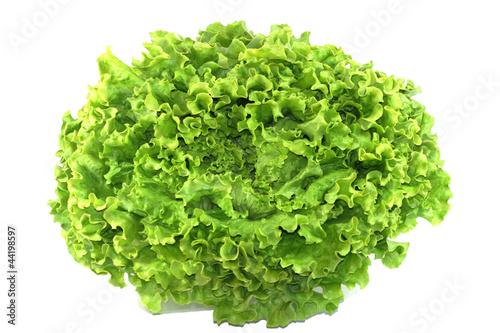 Fotobehang Salade salade batavia