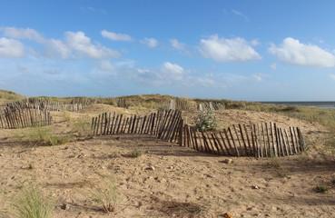 Dunes de Saint Jean de Monts
