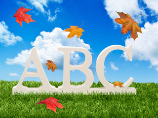 ABC Letters With Autumn Leaves