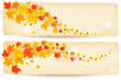 Set of autumn banners with colorful leaves  Vector