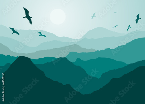 Birds over the mountains