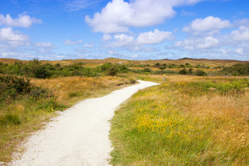 Eierland nature reserve on the island Texel in Netherlands